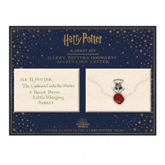 Harry Potter Hogwarts envelop magneet