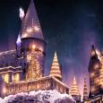 Bestel je kerstcadeaus vóór 19 december! 🎄🎅