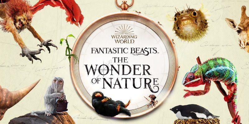 Fantastic Beasts: A Natural History.