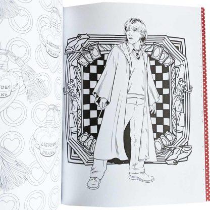 Harry Potter Kleurboek Magische Plekken en Personages